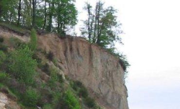 źródło: www.wikipedia.org